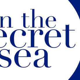 In the Secret Sea
