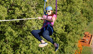 Aerial Adventures Lake Geneva Tickets
