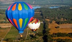 Sonoma Valley Balloons Tickets