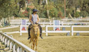 Traditional Equitation School Tickets