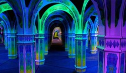 Magowan's Infinite Mirror Maze Tickets