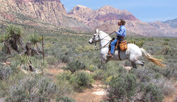 Vegas Trail Ride Tickets