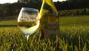 Brook Hollow Winery Tickets