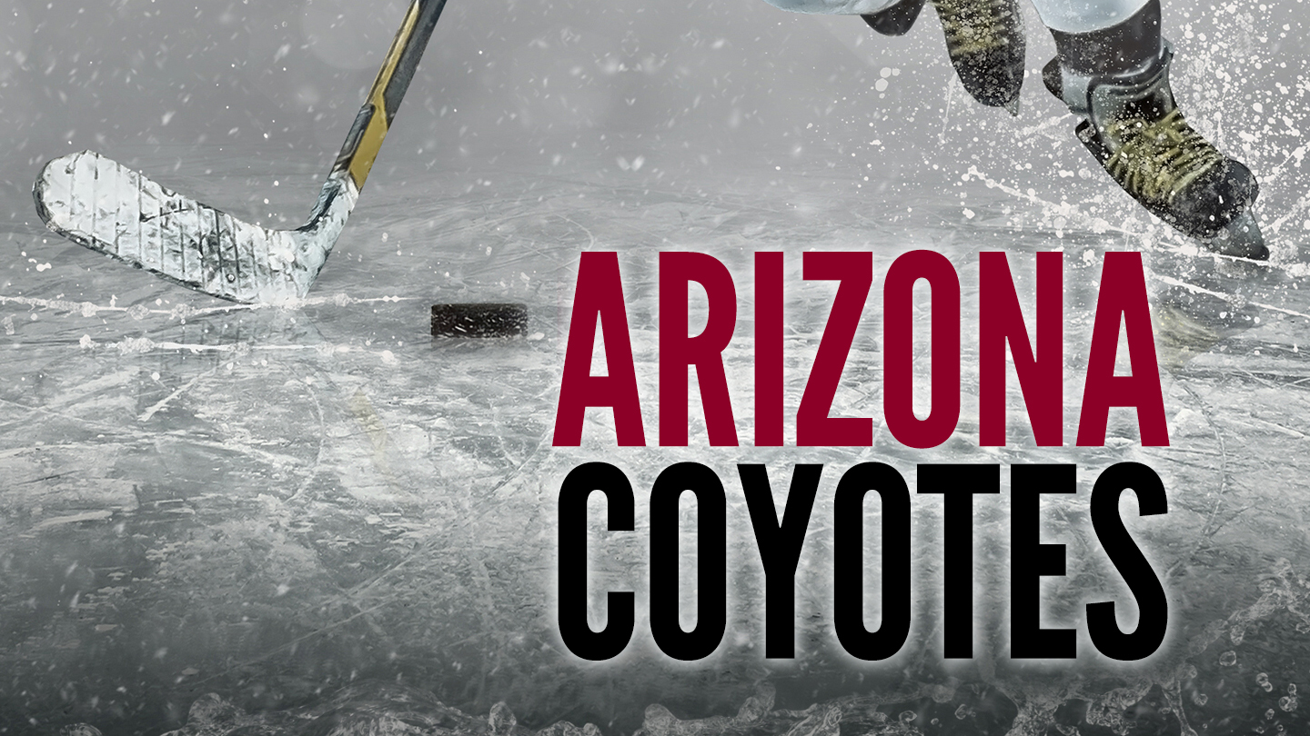 Arizona Coyotes Hockey at Gila River Arena $10 - $63 ($28.6 value)