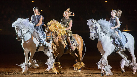 National Western Stock Show: An Evening of Dancing Horses
