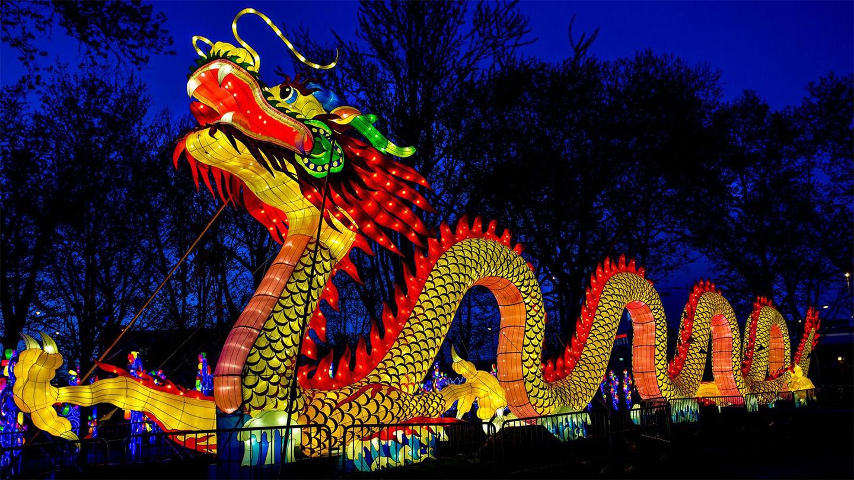Chinese Lantern Festival China Lights Reviews Ratings
