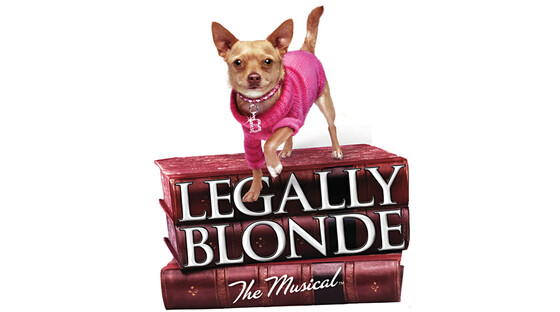 1492377396 legally blonde muical tickets
