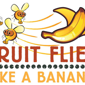 Fruit Flies Like a Banana: World Tour