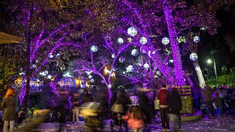 """A Wild Wonderland of Light: """"L.A. Zoo Lights"""""""