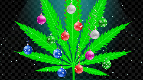 """The Kannabis Family Holiday Special"""