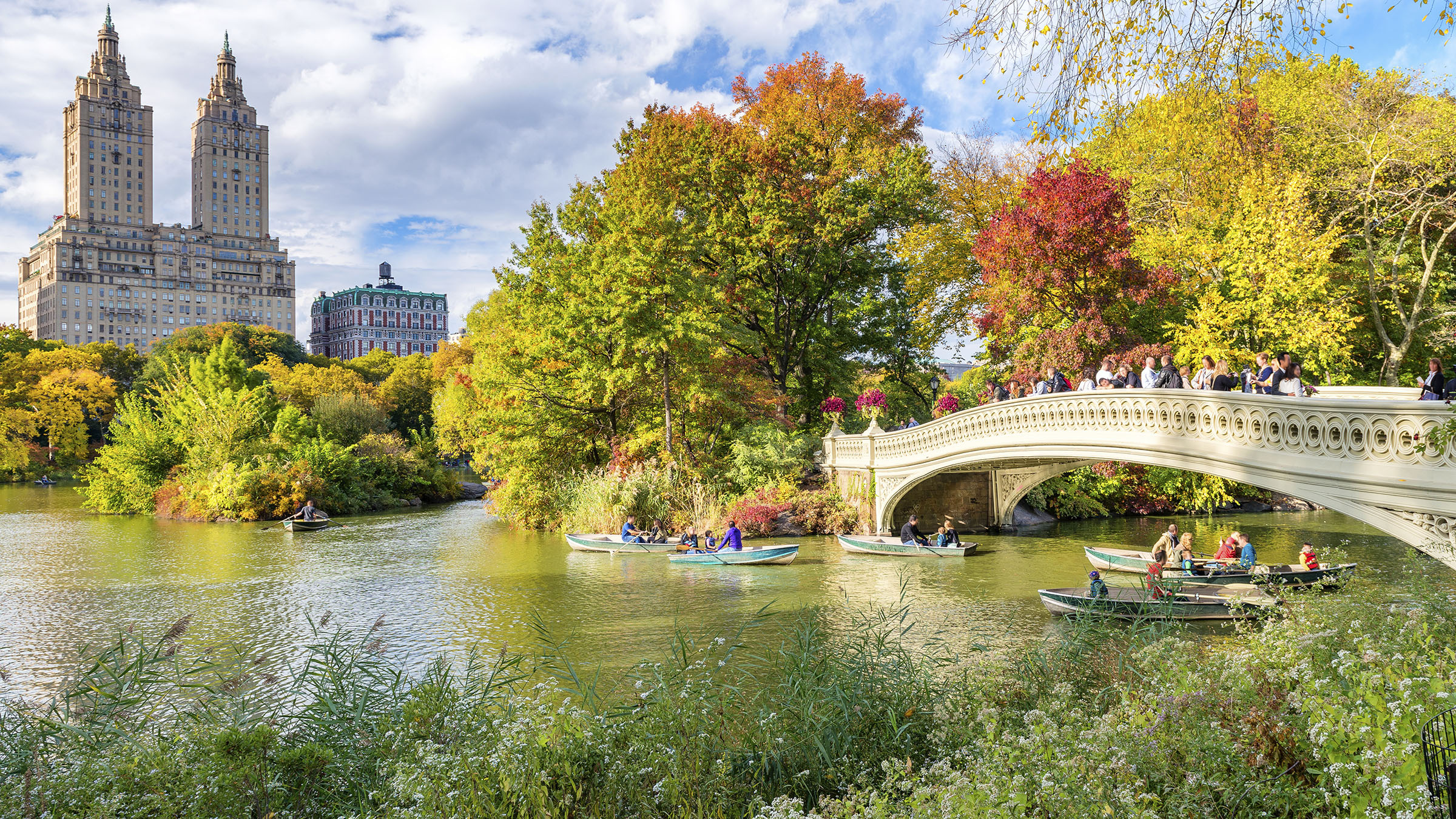Explore the Urban Beauty of Central Park