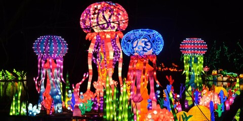 magical chinese lantern festival