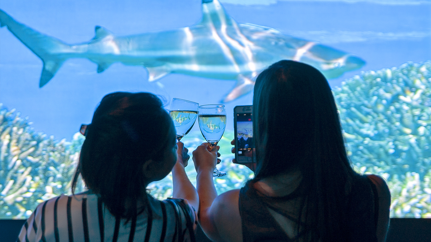 Go Under the Sea with a Drink at Nat Geo Encounter