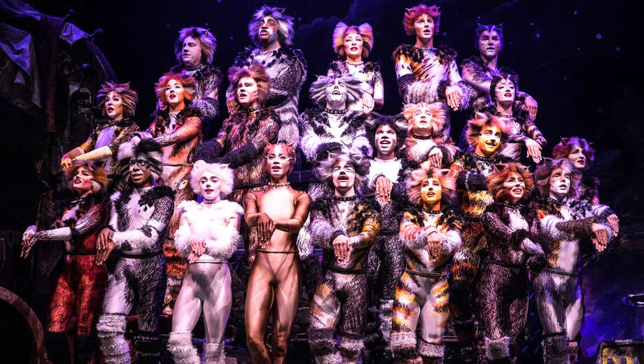 1551132794 cats tickets 1