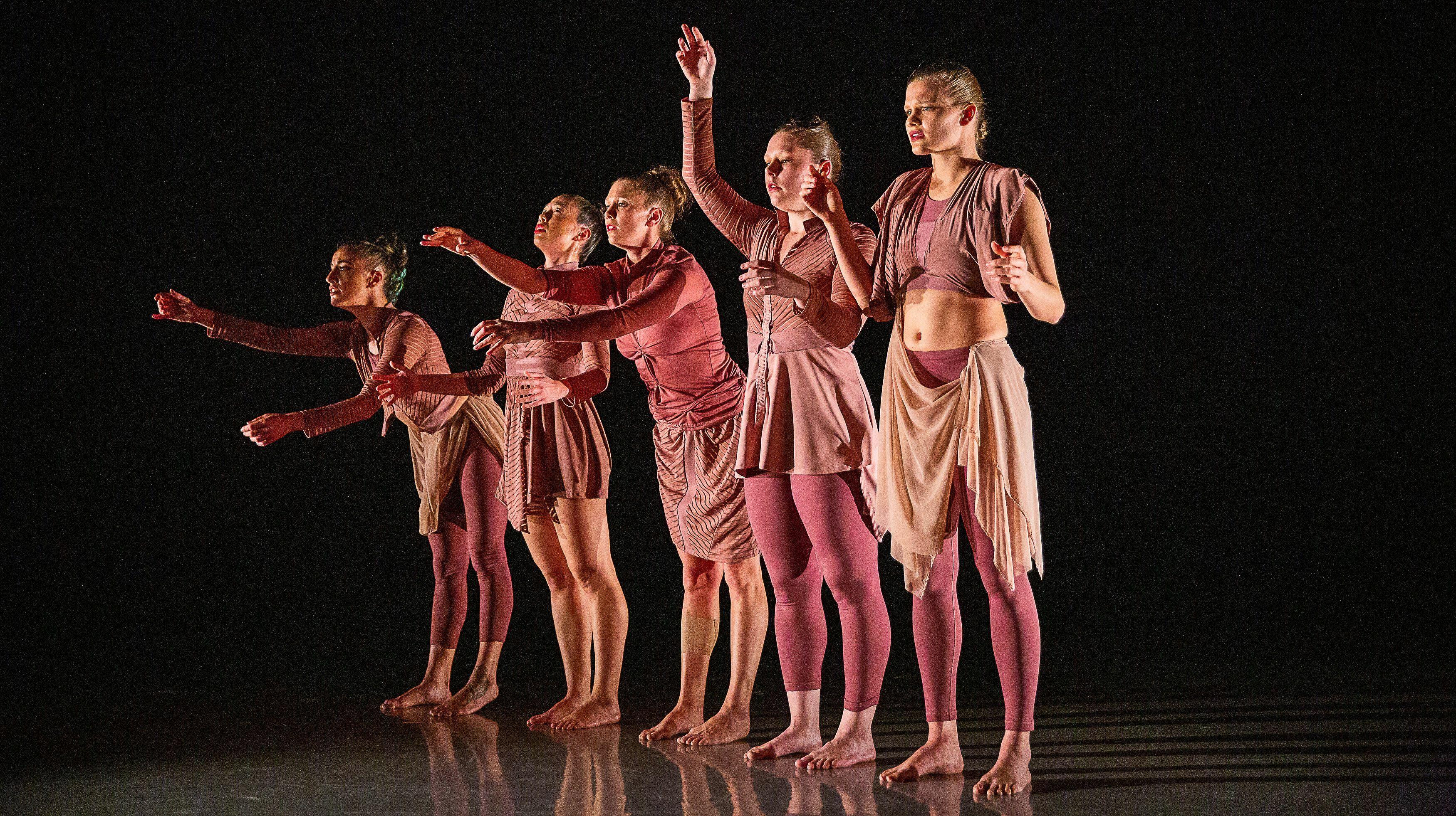 Ariel Rivka Dance & Guests