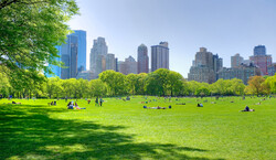 The Great Lawn at Central Park Tickets