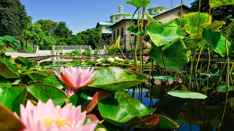 Spend a Day Strolling Brooklyn Botanic Garden