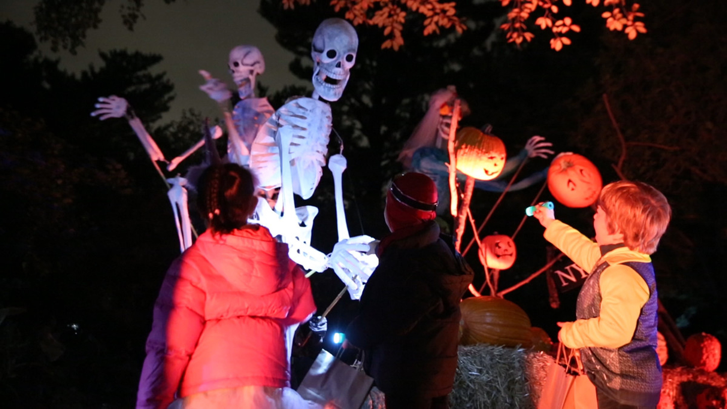 "NYBG's ""Spooky Pumpkin Nights"""