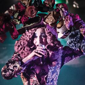 Queen of Hearts' Mad Masquerade