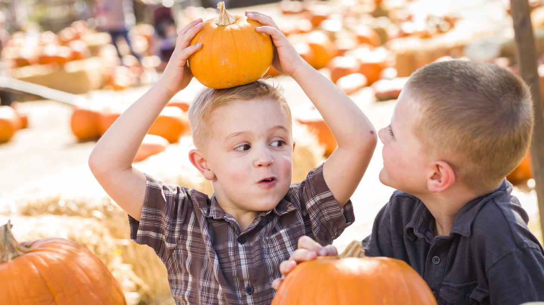 Pumpkin Patch & Fall Fun Fest