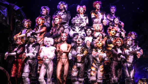 CATS: Andrew Lloyd Webber's Hit Musical