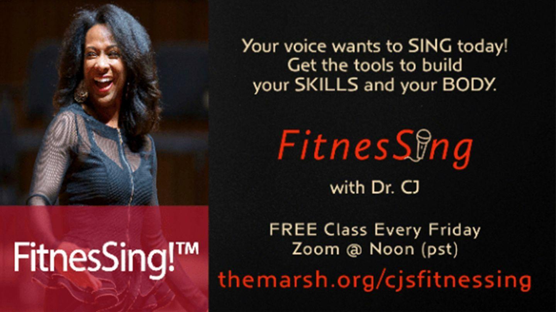 FitnesSing!™ - Online