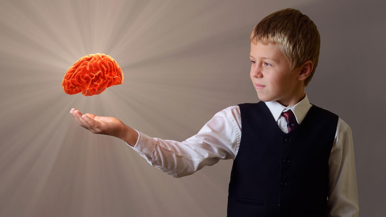 "Brain Academy: ""Neuroscience for Parents"" Online Course"