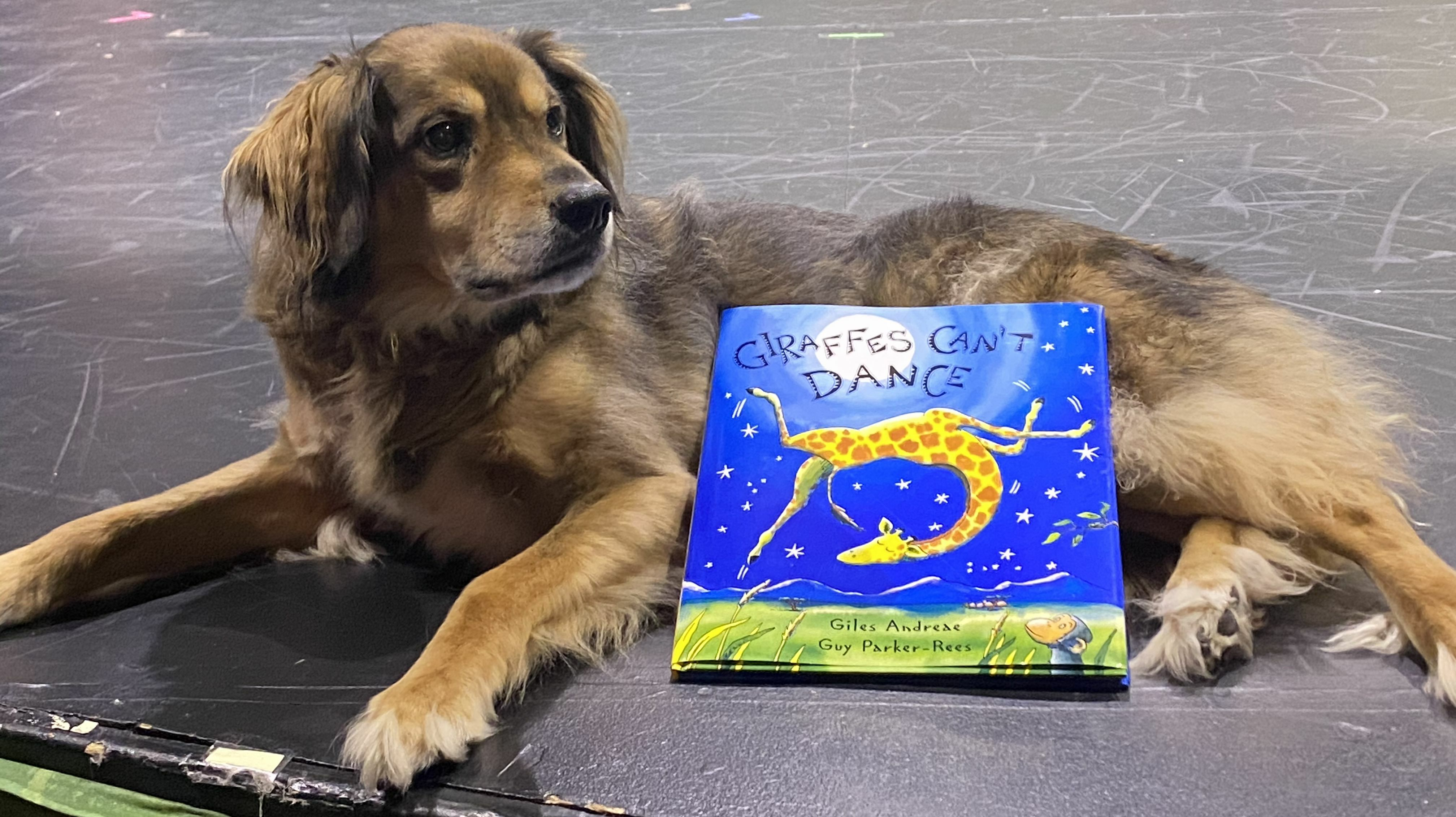Musical Story Time with Bravo the Theatre Dog -- Online