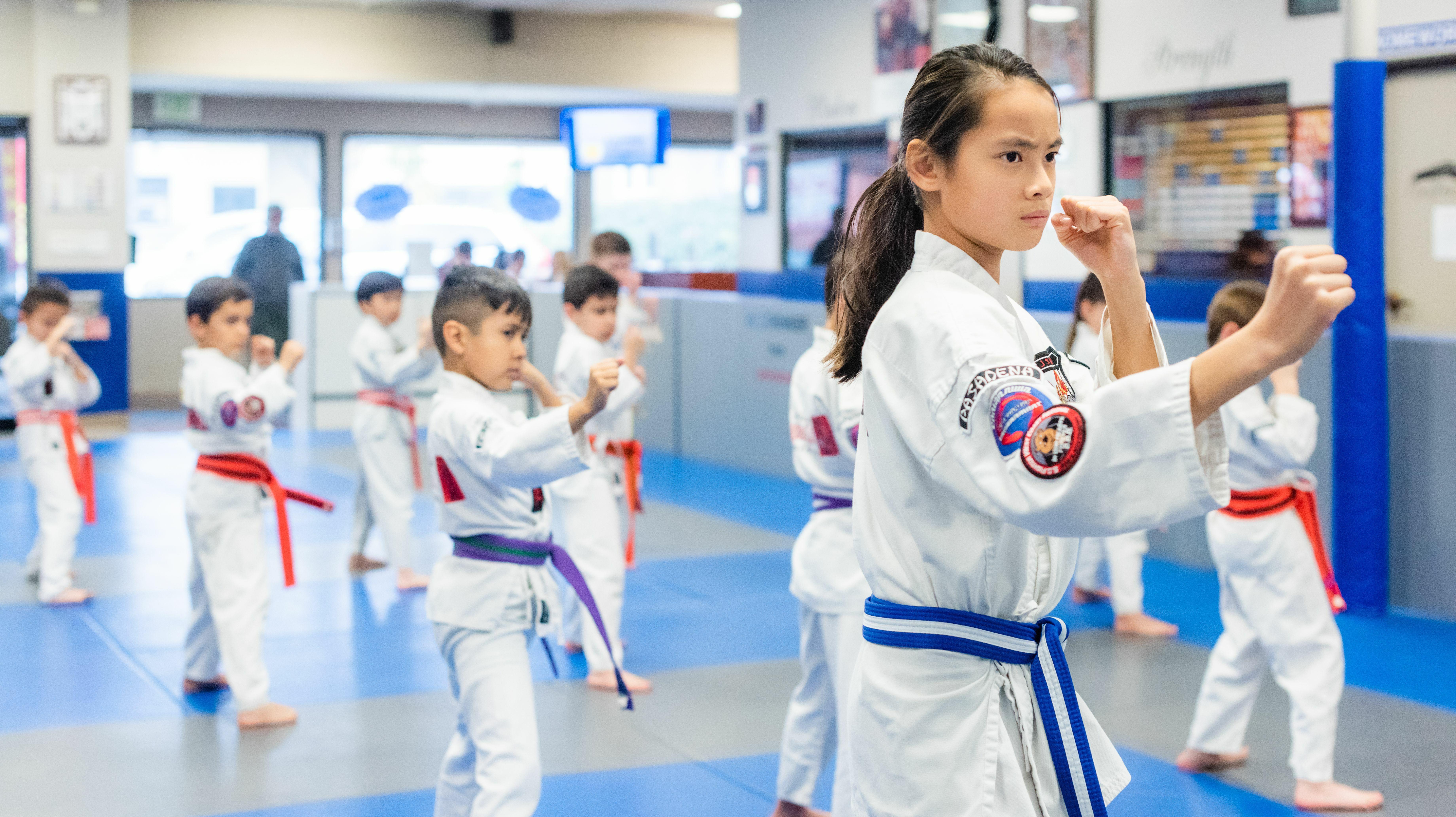 Online Martial Arts Lessons (Ages 5-13)