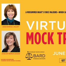 Virtual Mock Trial