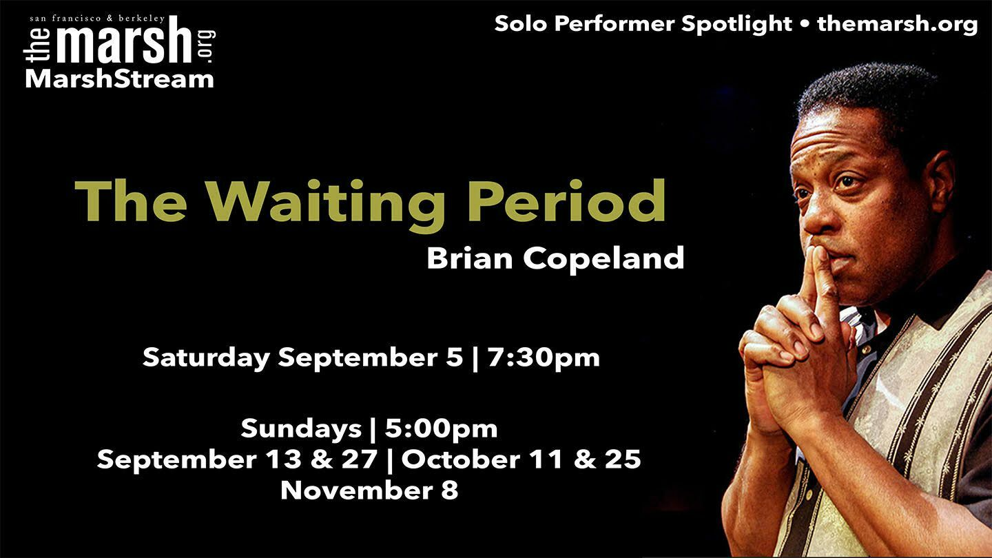 """Brian Copeland's """"The Waiting Period"""" -- Online"""