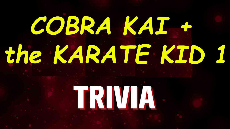 """Cobra Kai"" + ""Karate Kid 1"" (1984) Virtual Trivia"