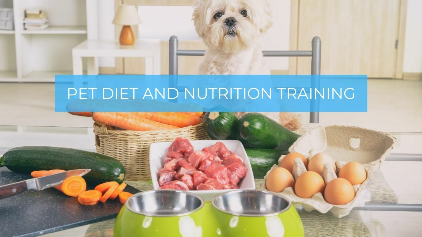 Natural Dog Whispering Pet Diet And Nutrition Training Course - Online