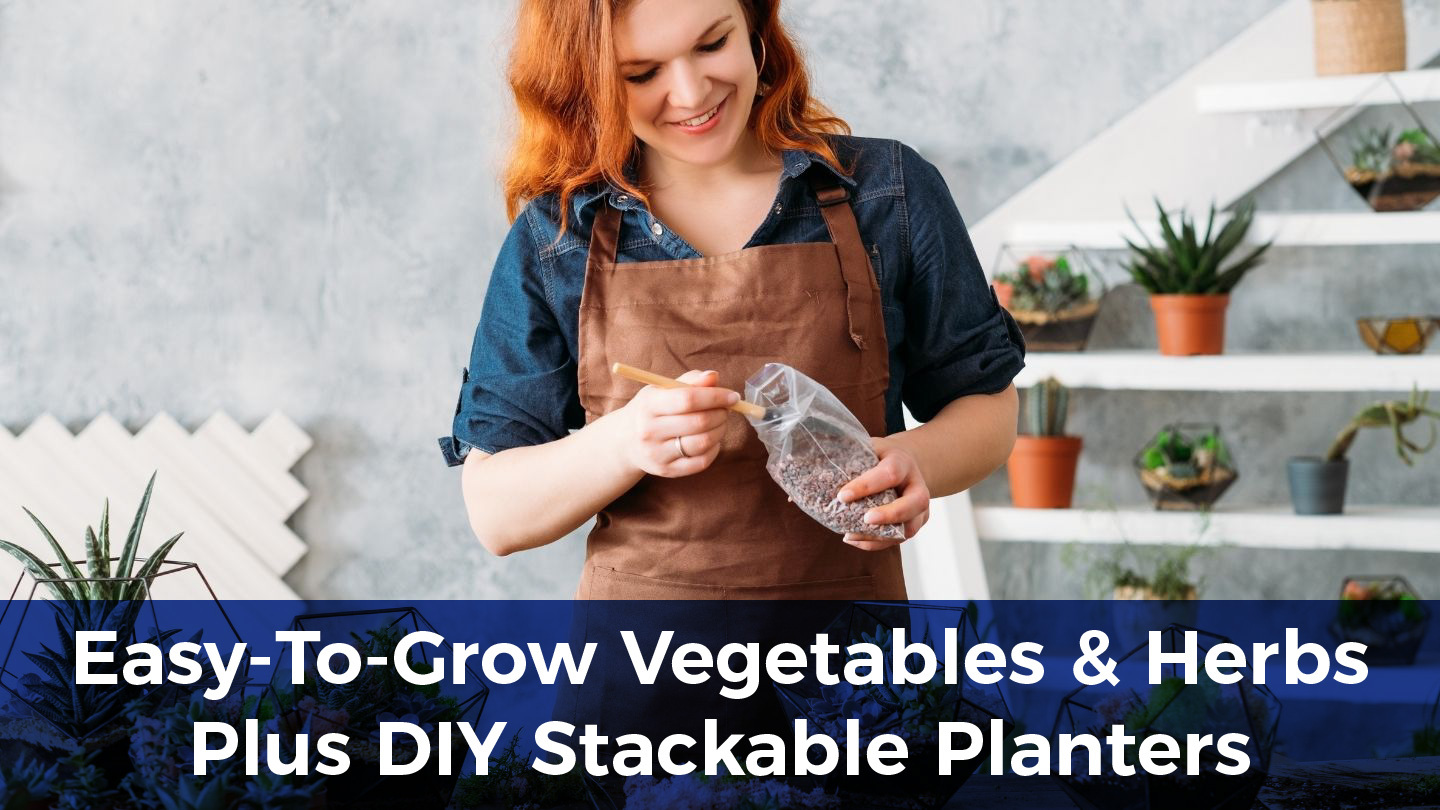 Easy-To-Grow Vegetables And Herbs Plus DIY Stackable Planters