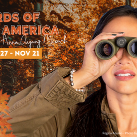 """Mosaic Theater of DC Presents """"Birds of North America"""