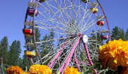 Nevada County Fairgrounds Tickets