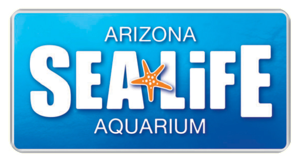 Image result for sea life arizona