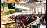 Chocolate and beer fest collage